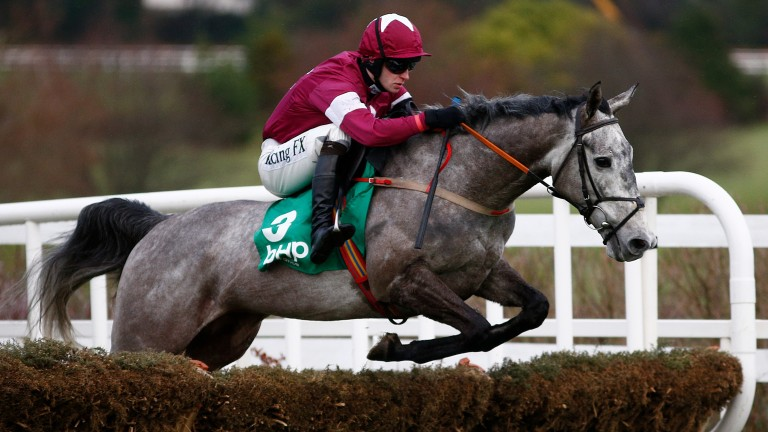 Petit Mouchoir: runs in the Betdaq Champion Hurdle at Punchestown