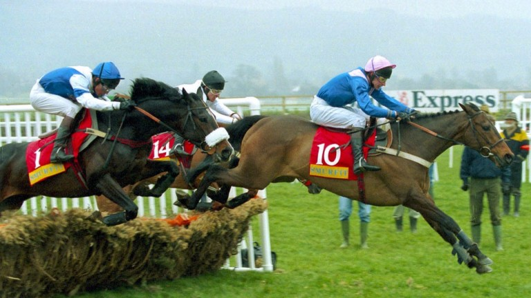 Alderbrook (number one) en route to his Champion Hurdle Triumph