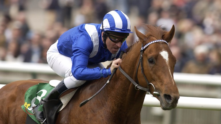 Haafhd and Richard Hills win the 2004 Craven Stakes at Newmarket, when the race was sponsored by bet365