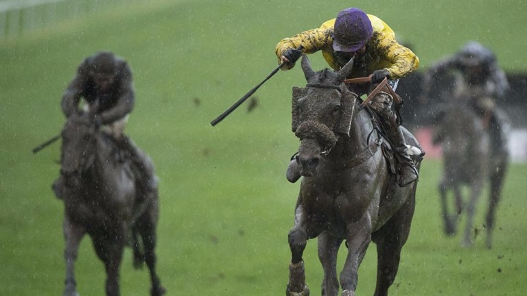 Mountainous: last season's Welsh National winner should get his favoured conditions