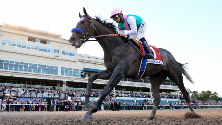 Arrogate: storms home in the Pegasus World Cup