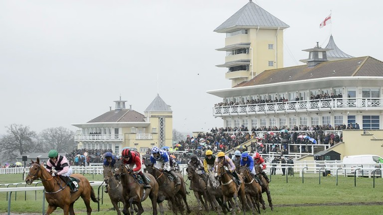 Towcester: home page is only 20 per cent horse racing, but at least the racing is free