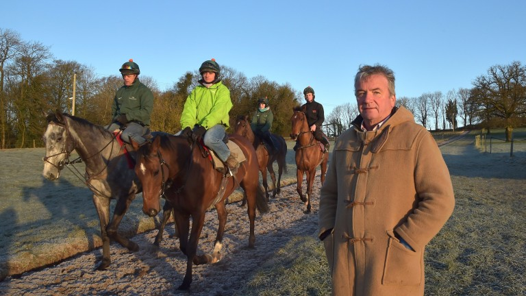 Nigel Twiston-Davies with Bristol De Mai (left) and Greatwood Hurdle hope The New One (right)