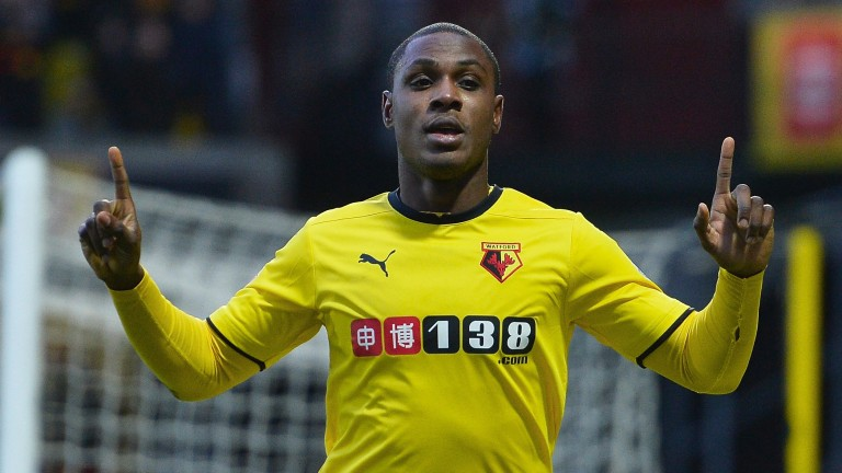 Odion Ighalo's Watford contributed to a great day for punters in 2015