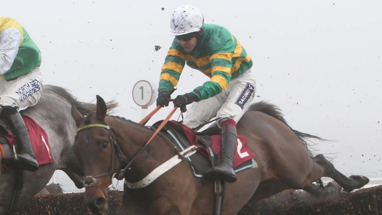 Buveur D'Air: back over hurdles as connections eye the Champion Hurdle