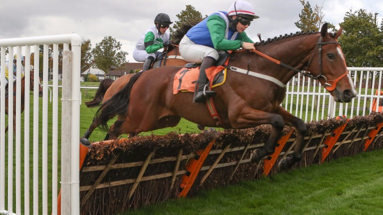 County set: Dominada and Megan Carberry in winning form at Carlisle earlier in the season
