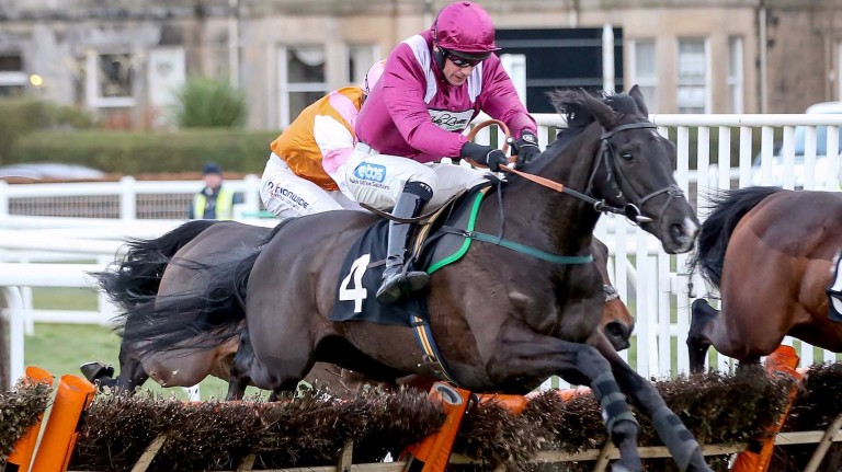 Project Bluebook: leading juvenile hurdler now owned by JP McManus