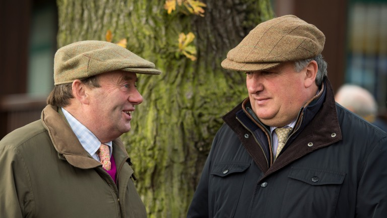 Nicky Henderson and Paul Nicholls: title rivals both saddle runners at Ascot