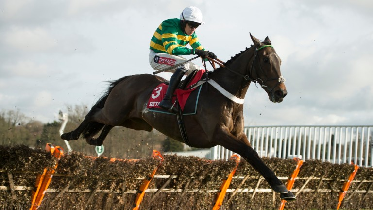 Buveur D'Air wins the Contenders Hurdle in comfortable fashion