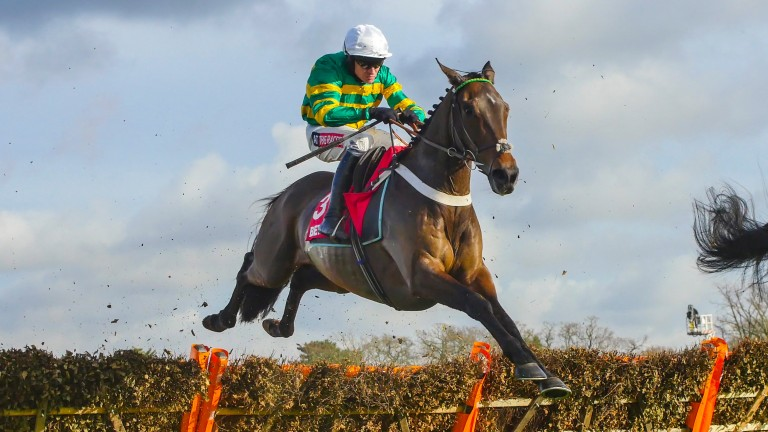 Buveur D'Air: cruised to victory in the Contenders Hurdle at Sandown