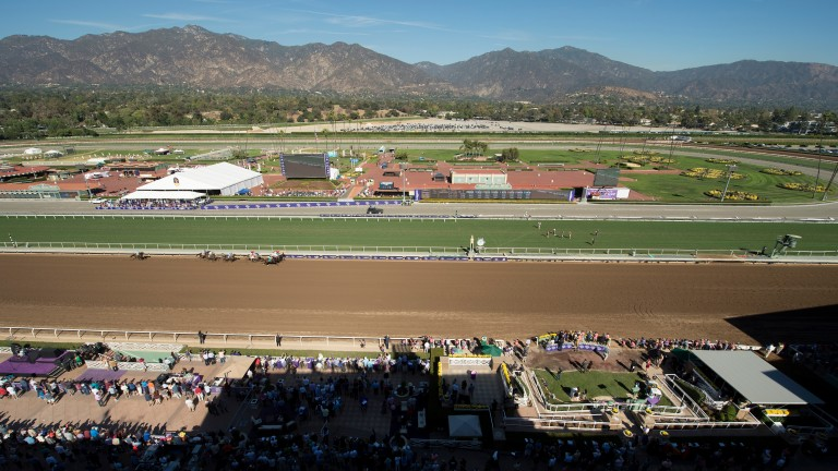 Santa Anita, where the renamed Ellie Mae finished ninth of ten on Saturday night