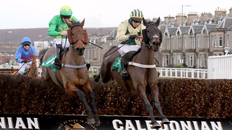 Dancing Shadow and Noel Fehily (right) head for victory in the Edinburgh National