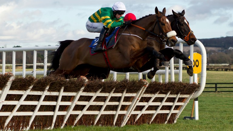 Sutton Place: the exciting hurdler continued his climb up the ladder