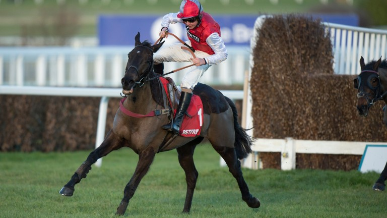 Otago Trail gives backers a moment of worry at Sandown
