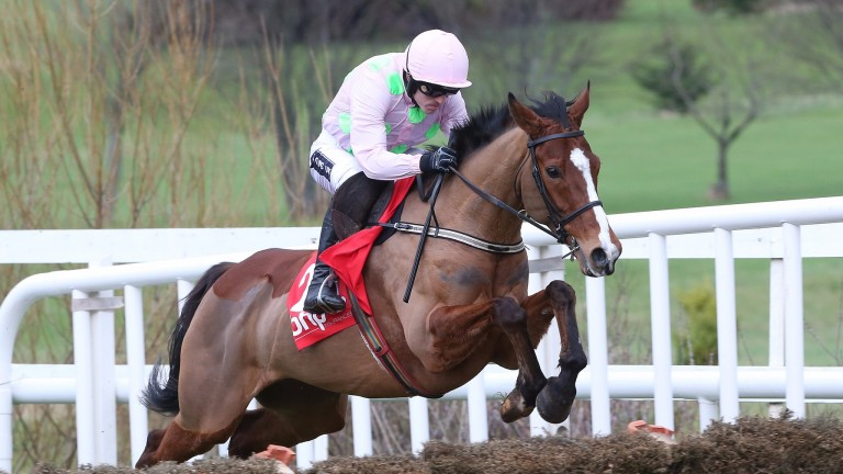 Faugheen: Ruby Walsh has issued an upbeat bulletin on the former Champion Hurdle winner