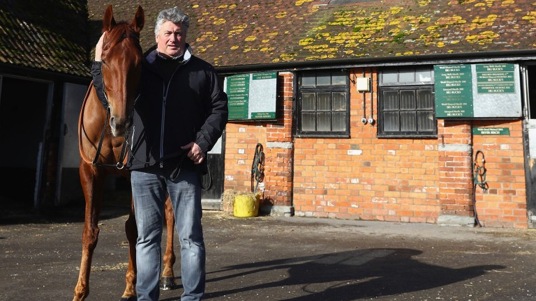 Paul Nicholls poses alongside Movewiththetimes, one of his two hopes for the Betfair Hurdle