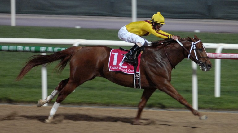 Curlin: joint-world champion in 2008 with New Approach