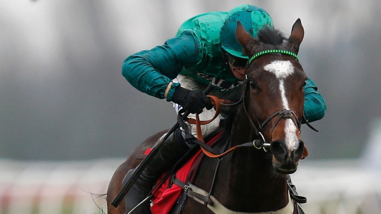 Messire Des Obeaux: likely to start a warm order for the Sidney Banks Memorial