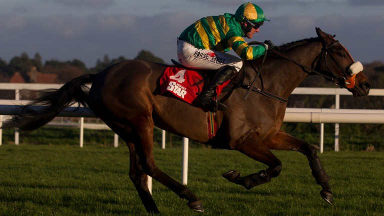 Thirsty Work: in good shape for Thurles bid