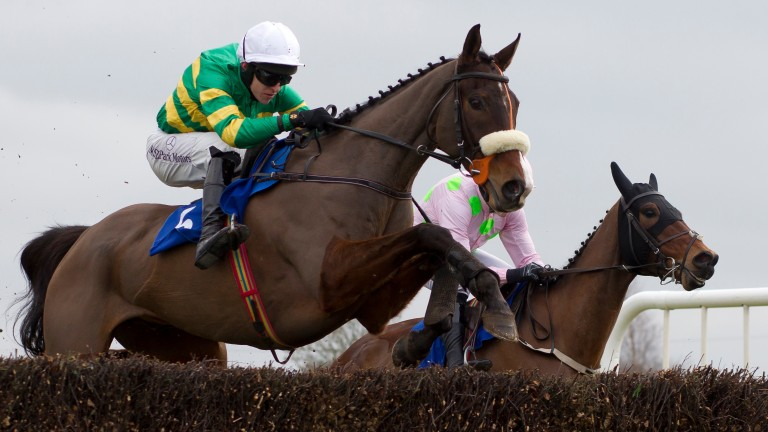 Fine leap: Don't Touch It and Mark Walsh jump the last en route to their victory in the beginners' chase at Thurles