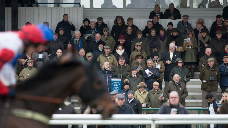 Close to the action: racegoers watch on as the runners in the 3m1f handicap hurdle pass the stand at Huntingdon