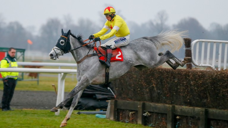 Politologue and Sam Twiston-Davies out on their own in the graduation chase
