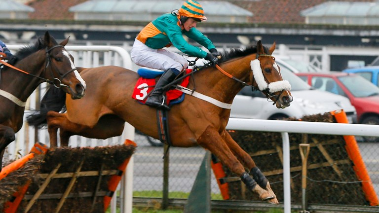 Tom Greatrex was in winning form at Kempton on Friday aboard Reilly's Minor
