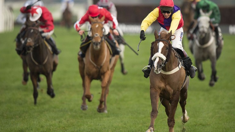 Native River: a Gold Cup winner waiting to happen?