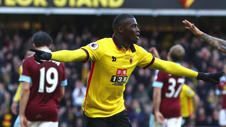 M'Baye Niang celebrates scoring for Watford