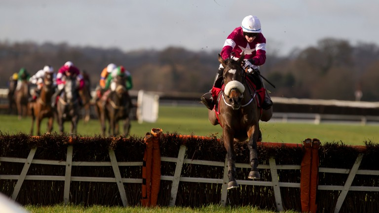 Dinaria Des Obeaux takes the step up to Grade 1 company after her easy win at Cork