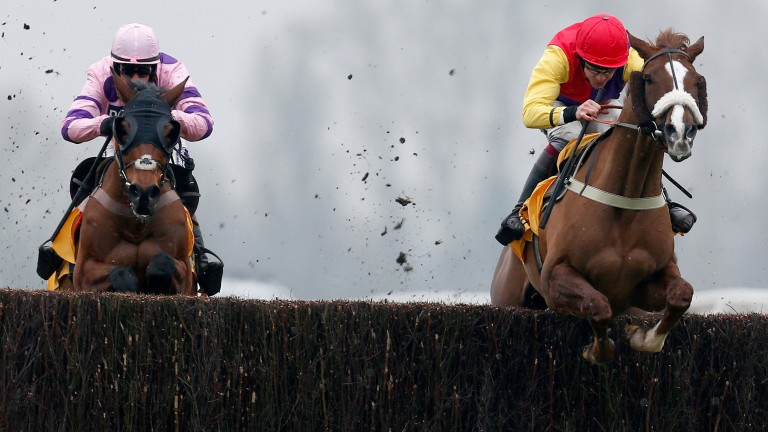 Native River (Aidan Coleman): leads Le Mercurey (left) over the last in the Denman Betfair Chase at Newbury on Saturday