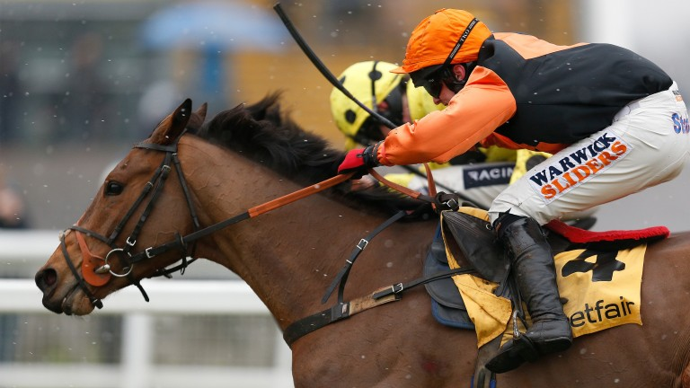 Tobefair: has been a revelation this season with seven wins
