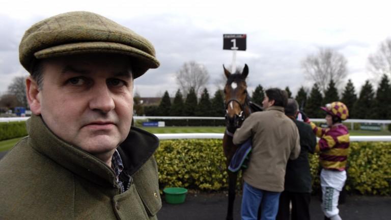 Michael Wigham: big plans for Glenamoy Lad