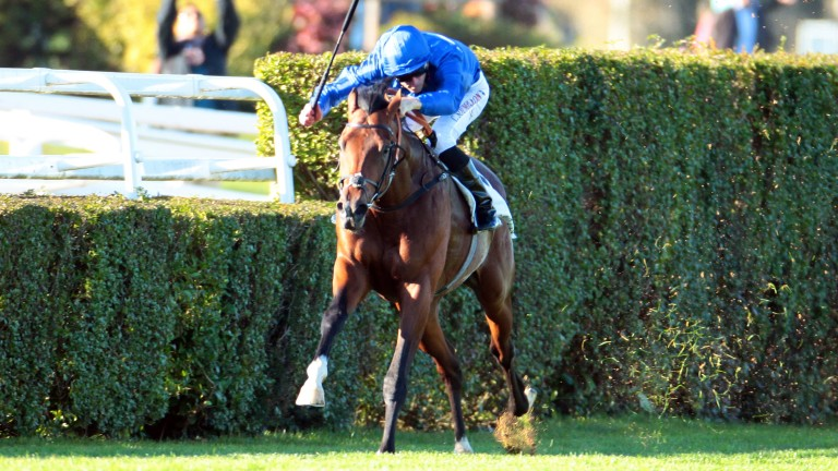 Thunder Snow: Group 1-winning two-year-old will run at the Curragh