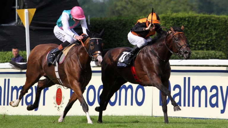 Lucky Lion (right): sees off Noble Mission in the Group 1 Grosser Dallmayr-Preis for trainer Andreas Lowe