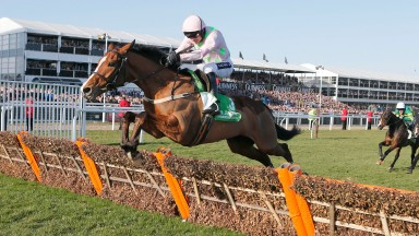 FAUGHEEN and Ruby Walsh wins at  Chelteham 10/3/15 Photograph by GROSSICK RACING 07710461723