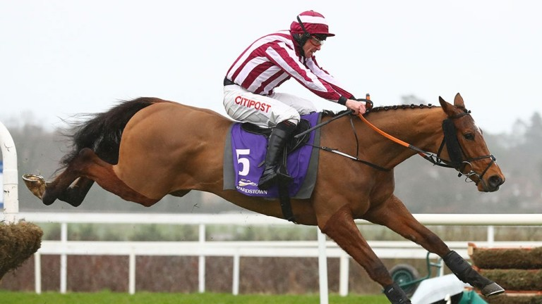 Mega Fortune: Triumph Hurdle fancy will be flying the flag for Soldier Of Fortune