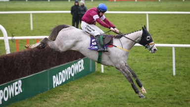 Disko: jumped into JLT contention with his win at Leopardstown on Sunday.