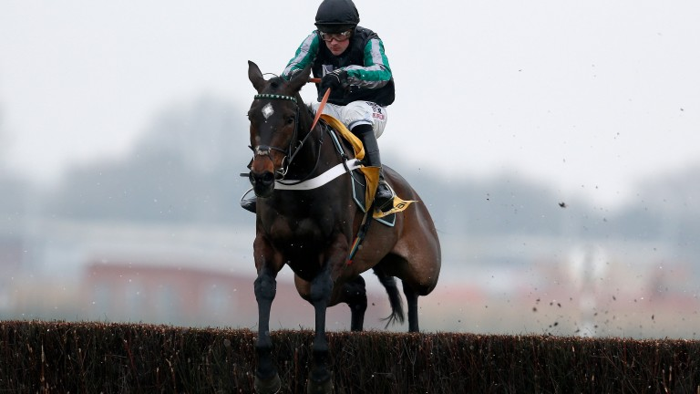 NEWBURY, ENGLAND - FEBRUARY 11:  Nico de Boinville riding Altior clear the last to win The Betfair Exchange Steeple Chase at Newbury Racecourse on February 11, 2017 in Newbury, England. (Photo by Alan Crowhurst/Getty Images)