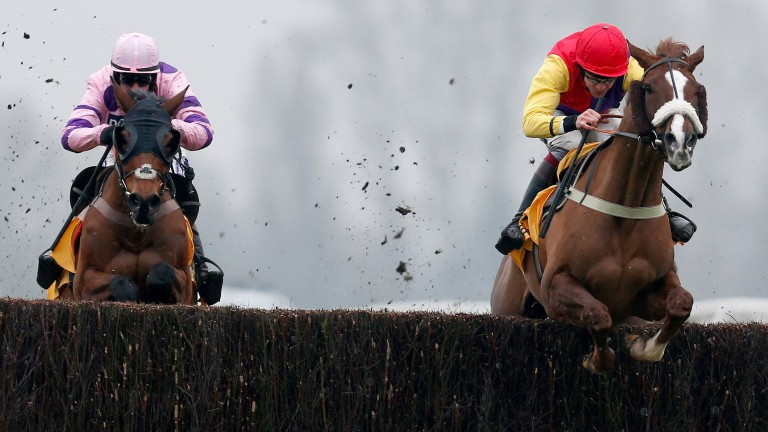NEWBURY, ENGLAND - FEBRUARY 11:  Aidan Coleman riding Native River (R) clear the last to win The Betfair Denman Steeple Chase from Le Mercurey (L) at Newbury Racecourse on February 11, 2017 in Newbury, England. (Photo by Alan Crowhurst/Getty Images)
