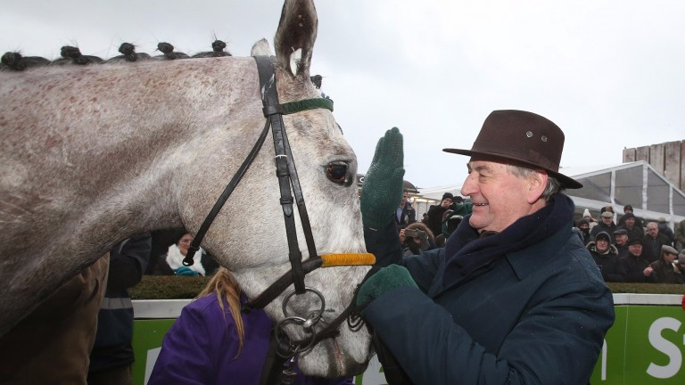 Disko: will not be running in the Gold Cup, according to his trainer Noel Meade