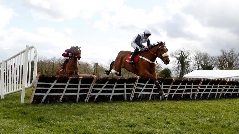 One Track Mind: beaten in both starts over fences