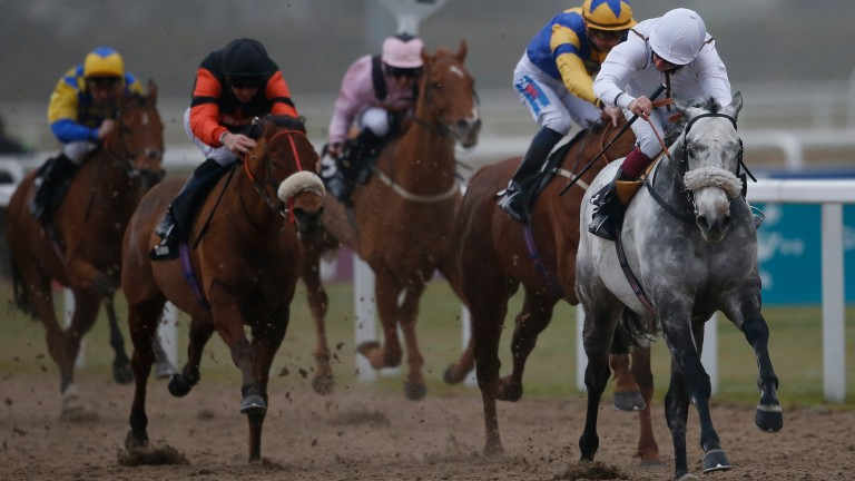 Holiday Magic (white silks, far right) lands the middle leg of a hat-trick at Chelmsford in December