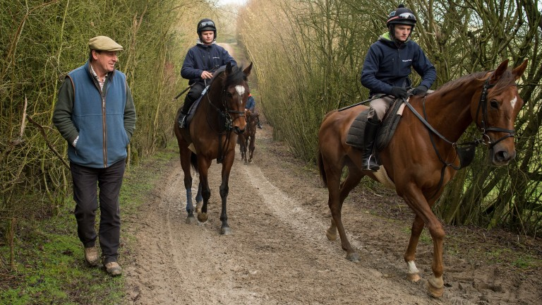 The Last Samuri (right) leading the string at Kim Bailey's yard