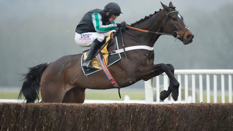 Altior: hot-favourite for the Racing Post Arkle