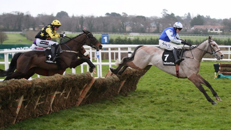 Deloitte Novice Hurdle winner Bacardys (left) in pursuit of stablemate Bunk Off Early