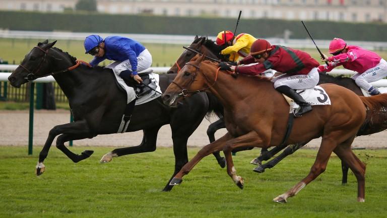 Manatee (blue) wins the Group 2 Grand Prix de Chantilly