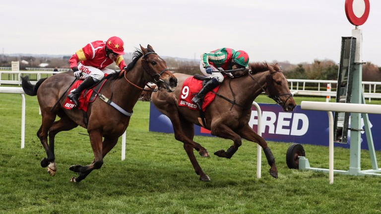 Becher Chase principals Vieux Lion Rouge and Highland Lodge will be able to reoppose in April