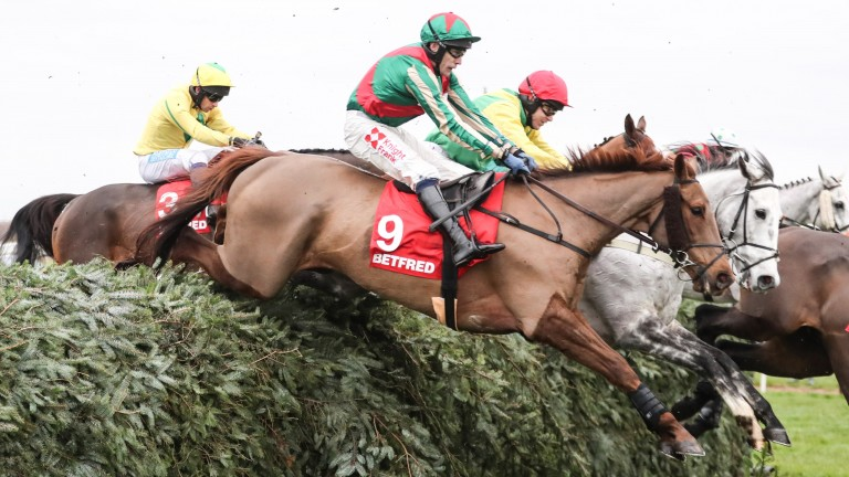 Vieux Lion Rouge: two out of two this season