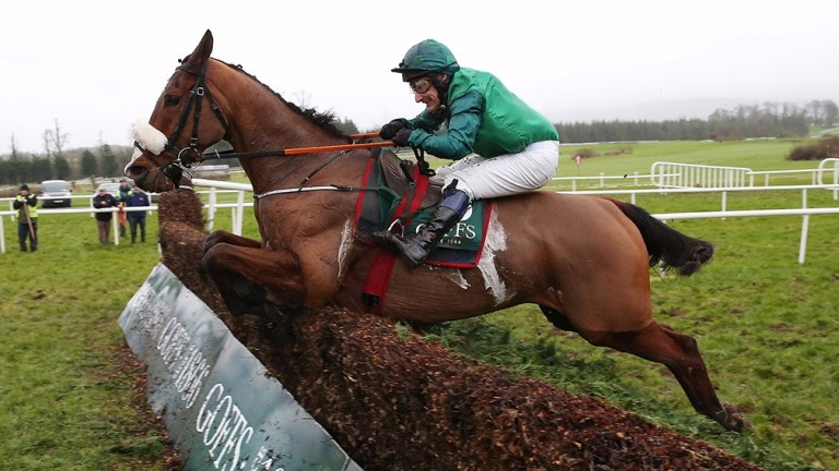 Ucello Conti: set to tackle the Leinster National at Naas for Gordon Elliott